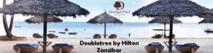 Doubletree by Hilton Zanzibar main banner